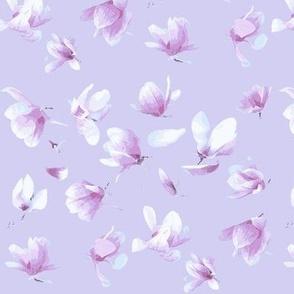 Tulip Magnolia (Light Purple)