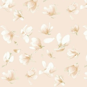 Tulip Magnolia (Blush)