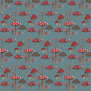 Mushroom Madness- Amanita Muscaria