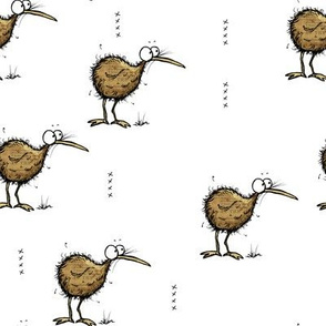 Little Kiwi birds