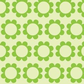 daisysweet green