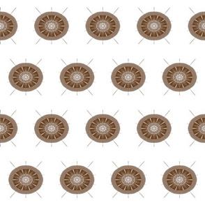 Sea Urchin Brown and White