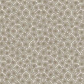 "petoskey stone - natural, small (1/2"" corals)"