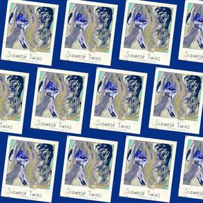 Toxicat's Siamese Twin (Polaroid)