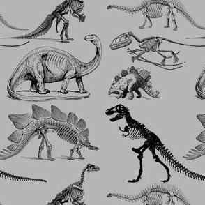Black Dinosaur Skeletons on Grey, Museum Animals