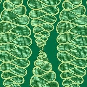 Fibonacci spiral growth