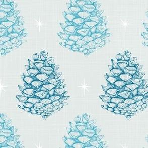 Pine Cones - Snow