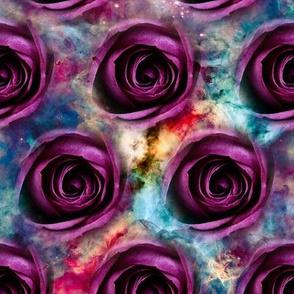 Galaxy Roses