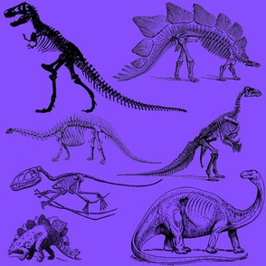 Vintage Museum Skeletons | Dinosaurs on Lavender