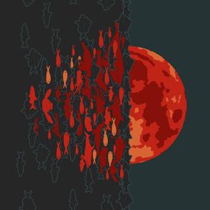 Aquatic reflections of a super moon