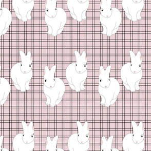 Quadry Rabbits Pink