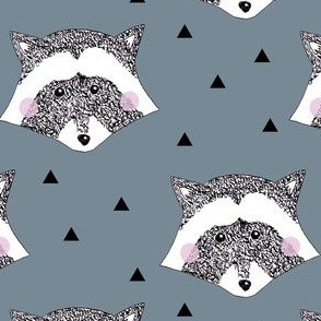 Racoon Blue