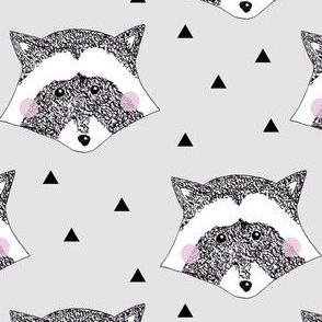 Racoon Grey