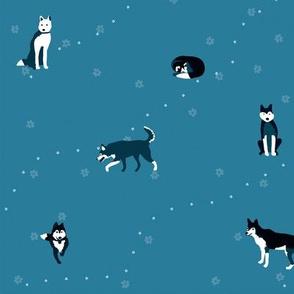 Happy Huskies Bluegreen