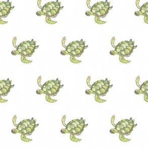 Green turtle watercolour