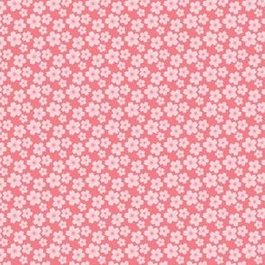 Sakura Cherry Blossom in Pinks