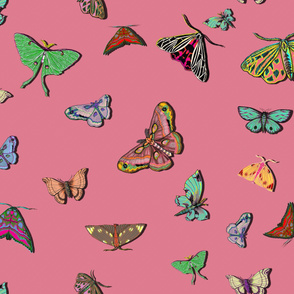 Moths Pink Large Scale
