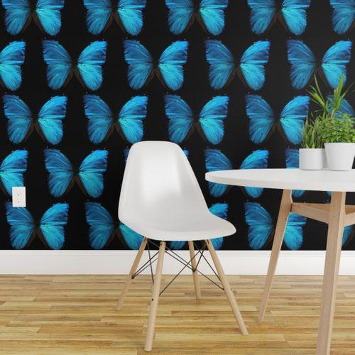 Wallpaper Blue Morpho Butterfly Wings