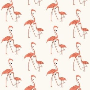 Flamingo silhouette and outline