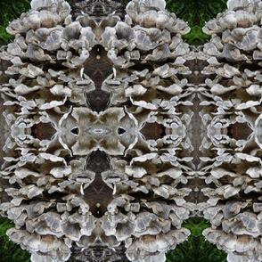 Mushrooms & Grass