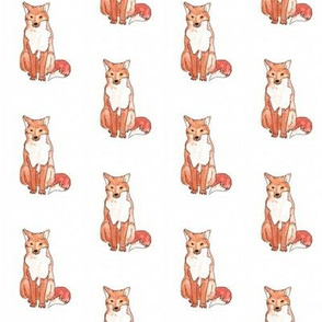 Red fox watercolour