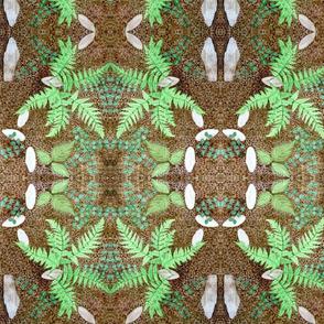 Fern Symmetry