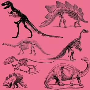 Vintage Museum Skeletons | Dinosaurs on Salmon Pink