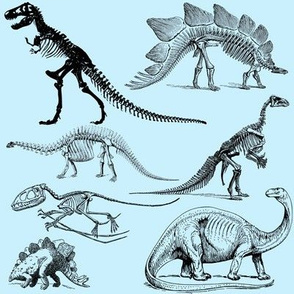Museum Animals | Dinosaur Skeletons on Baby Blue