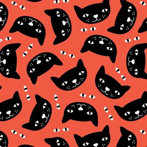 Kitty black orange cat cute cats fabric for halloween