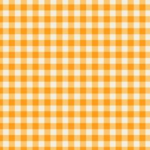 Funhouse Gingham in Citrus Orange
