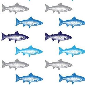 Multi Fish in Blue