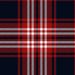 "Tweedside red district tartan, 6"" bright"
