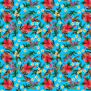 tropical_mothras_blue