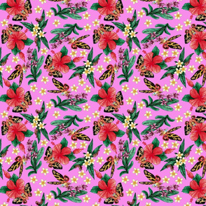 tropical_mothras_pink