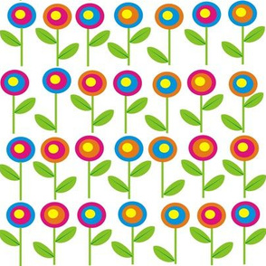 Rows of flowers
