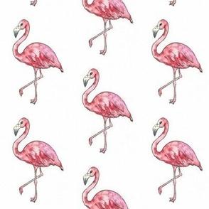 watercolour flamingo