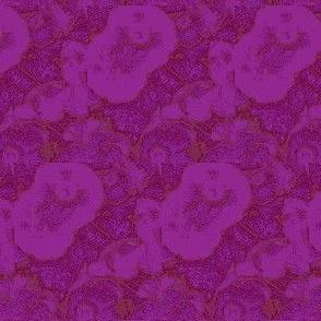 poppies (purple/magenta)