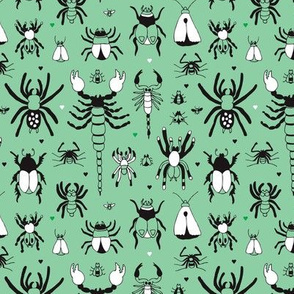 Bugs and creeps funny little green botanical insects scorpion spiders and beetles