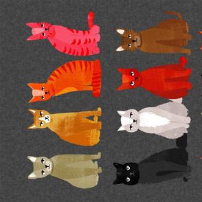 tea towel // cats kittens cute pets pet cat sweet kitty