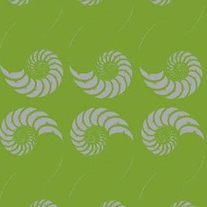 nautilus (sprig of mint)