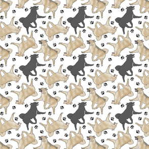 Trotting Norwegian Buhunds and paw prints - white