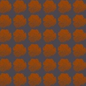 it just *might* be a poppy (midnight+orange)