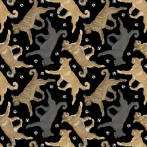 Trotting Berger Picard and paw prints - black