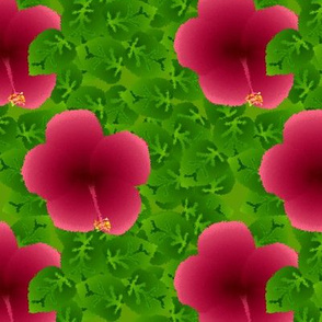 I-spy hibiscus
