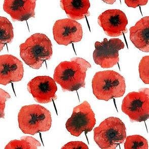 pattern of poppy