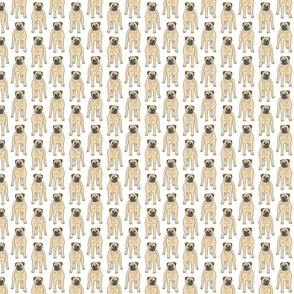 Standing Bullmastiffs - small