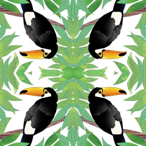 Tropical Toucan Collage
