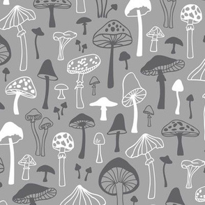 Mushrooms Fall Autumn Forest in Grey