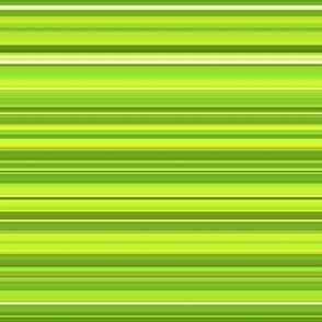 peridot stripe
