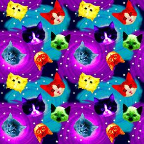 Rainbow_Galaxy_Cats